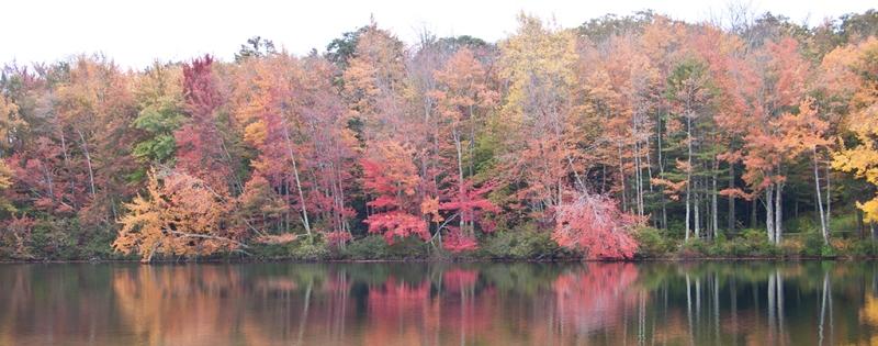 autumn color in maine